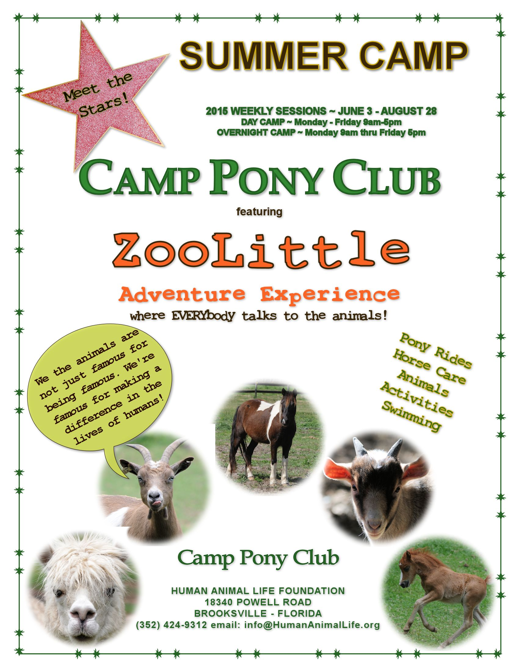 CAMP PONY CLUB FLYER 2015 #3