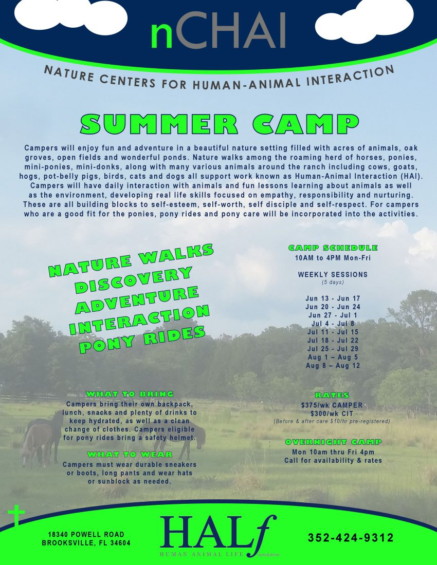 nCHAI camp flyer 2016